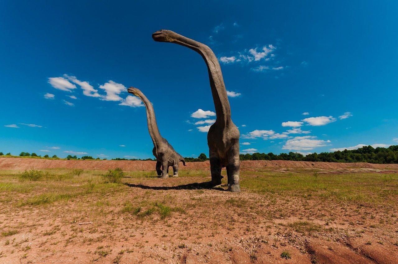 Décorer avec du papier peint dinosaure